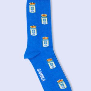 Escudo Oviedo (1)
